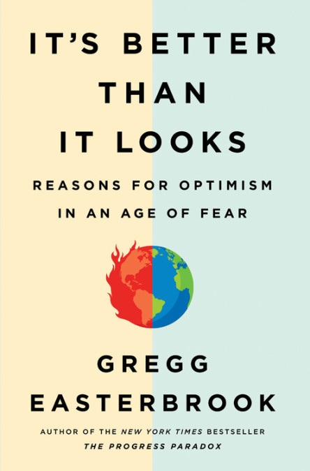 Better Than it Looks: Reasons for Optimism in an Age of Fear (book cover)